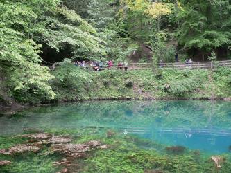 Das Bild zeigt eine türkisfarbene Wasserfläche, auf der Pflanzenreste schwimmen. Auch unter Wasser sind Pflanzen zu erkennen. Das rückseitige Ufer besteht aus einer steilen, bewachsenen Böschung. Ein von Bäumen beschatteter Wanderweg führt darauf entlang.