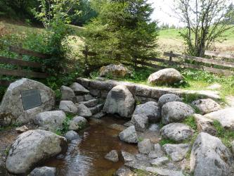 Blick auf eine Wasserquelle. Die Quelle ist ein von abgerundeten Steinblöcken, einer Mauer und einer Steintreppe eingefasstes schmales Becken. Dahinter stehen Holzzäune und Bäume vor einem grasbewachsenen Hang.