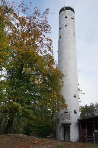 Blick auf einen hellgrauen, schornsteinartig aussehenden Turm mit kleinen Fensteröffnungen und Aussichtsplattform. Der Turm steht zwischen mehreren hohen Bäumen und einem kleineren Anbau.
