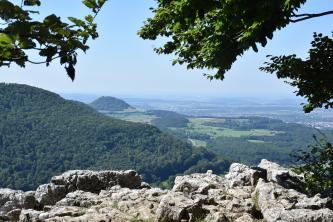 Blick von erhöhtem Standort über ein Felsplateau im Vordergrund. Zum Hintergrund hin sieht man links einen bewaldeten Bergrücken sowie dahinter und rechts flache, bewaldete Hügel mit einem Bergkegel links.
