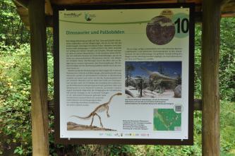 Blick auf eine bebilderte Schautafel im Naturpark Schönbuch mit dem Thema: Dinosaurier und Paläoböden.