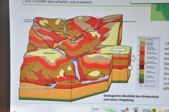 Ausschnitt einer bebilderten Schautafel mit dem Thema: Geologisches Blockbild des Kirnbachtales und seiner Umgebung.