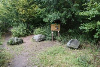 Blick auf mehrere Pfade, die in einen Wald führen. Zwischen den Pfaden liegen größere Steinbrocken. Rechts der Bildmitte, unter einem Nadelbaum, ist zudem eine Hinweistafel aufgestellt.