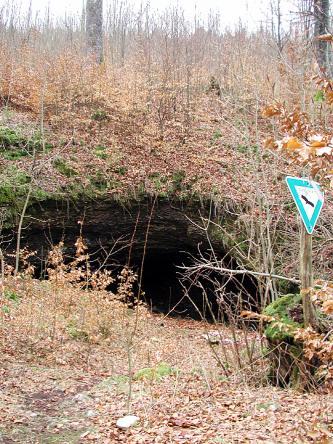 Blick auf einen mit Bäumen und Sträuchern bewachsenen, zum Hintergrund hin aufsteigenden Hang. Im Vordergrund ist eine größere Öffnung im Hang zu sehen. Daneben steht ein dreieckiges Schild mit blauem Rahmen.