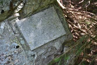 Nahaufnahme einer kleinen rechteckigen Gesteinsplatte. Die hellgraue Platte ist Teil eines größeren Gesteinsblocks. Links bildet eine Vertiefung eine Art Rand zur Platte. Rechts ist Gehölz erkennbar.