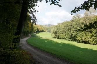 Blick in ein von Wald umgebenes, leicht hügeliges Tal. Zwischen den Wäldern liegt eine eingezäunte Wiese, auf der Pferde weiden. Links davon verläuft ein Weg. Im Hintergrund erhebt sich ein bewaldeter Berg.
