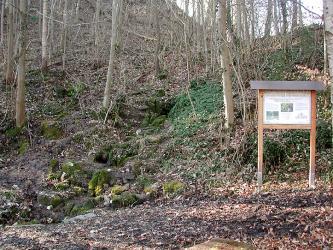 Blick auf einen von schlanken Bäumen bestandenen, nach rechts und zum Hintergrund hin aufsteigenden Hanges. Ein links beginnender, mit Steinstufen versehener Weg führt den Hang hinauf. Rechts steht eine Schautafel.