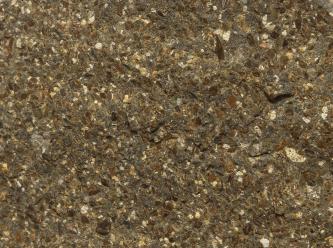 Nahaufnahme von dunkelgrünem bis braunem Gestein mit rauer Oberfläche und vielen kleinen hellen Einschlüssen.
