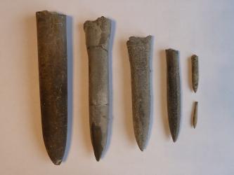 Nahaufnahme mehrerer bräunlich grauer Gesteinskörper, wie Messer am unteren Ende spitz zulaufend. Die Größe der Fundstücke nimmt von links nach rechts ab.