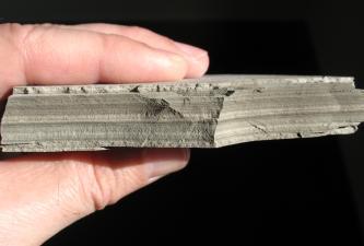 Handstück aus fein geschichtetem Sedimentgestein in hell- is dunkelgrauer Farbe.