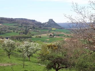 Blick auf einen schmalen, kantigen Kegelberg, der sich am Ende eines bewaldeten Bergrückens befindet. Vom Kegelberg aus verläuft eine hügelige Landschaft auf den Betrachter zu, mit blühenden Bäumen im Vordergrund.