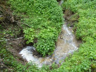 Blick von oben auf einen strudelförmigen Bachlauf, dessen Wasser in einer Vertiefung des Erdreiches (links unten im Bild) verschwindet. Der Bach ist von Grünpflanzen gesäumt.