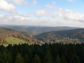 Weiter Blick von oben über die dunklen Spitzen eines Nadelwaldes auf eine bis zum Horizont reichende, bewaldete Berglandschaft.