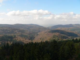 Von weit oben blickt man über dunkle Waldspitzen auf mehrere herbstlich gefärbte, bewaldete Bergrücken. Weit dahinter ist im Dunst gerade noch eine besiedelte Ebene erkennbar.