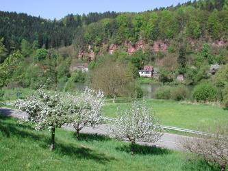 Hinter blühenden Obstbäumen, einer Straße und weiteren, auf einer Wiese stehenden Bäumen ist ein waagrecht verlaufender Fluss erkennbar. Auf der anderen Seite des Flusses erheben sich rötlich braune, oben bewaldete Felswände.