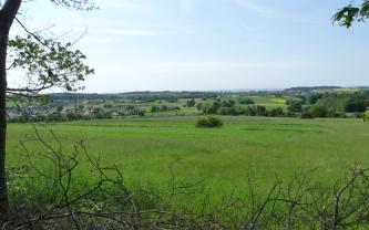 Blick über vom Boden hochragendes Gestrüpp auf eine weite, hochgelegene Wiese. Im Hintergrund erstreckt sich ein schmaler Streifen leicht hügeliger Landschaft mit Feldern, Bäumen und Siedlungshäusern.