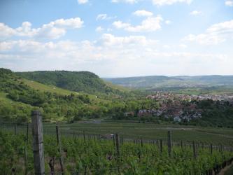 Man blickt über Weinreben hinweg auf einen stufig nach rechts abfallenden Höhenrücken. Rechts davon befindet sich eine Siedlung. Bis zum Horizont schließen sich Felder und Hügel an.