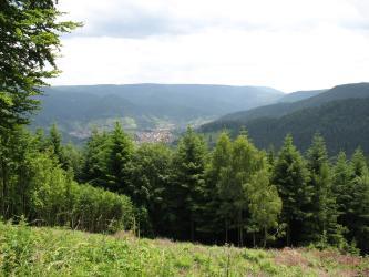 Das Bild zeigt bewaldete Hänge und Hochflächen. Im Tal in der Bildmitte liegen mehrere Siedlungen.