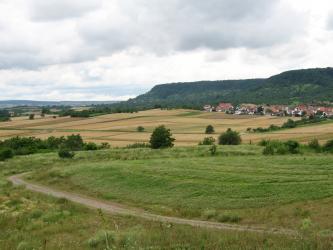 Das Landschaftsbild zeigt im Vordergrund eine Wiese mit einem nach links hinten verlaufenden Weg. Dahinter sind nach einigen Bäumen Felder und eine Siedlung zu erkennen. Im Hintergrund zieht sich ein nach links stufig abfallender, bewaldeter Bergrücken.