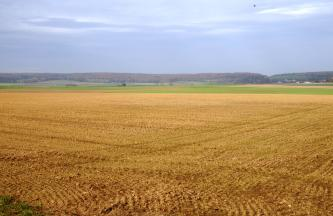 Blick über einen weiten rötlich braunen Acker, der am hinteren Rand von Grünflächen abgelöst wird. Im Hintergrund sind langgestreckte, bewaldete Bergrücken zu sehen.