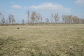 Blick über eine weite, ausgebleichte Grasfläche, in die in Abständen gemauerte Brunnen eingelassen sind. Zum Hintergrund hin erhebt sich von links nach rechts ein niedriger Damm mit hohen Alleebäumen.