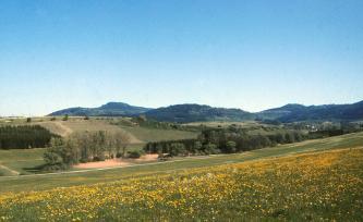 Über blühende, nach links geneigte Wiesen blickt man auf wieder ansteigendes Gelände mit Feldern und Waldstreifen. Im Hintergrund sind mehrere bewaldete Berge zu erkennen.