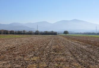 Blick über stoppelige braune Ackerflächen, die bis zum Horizont reichen. Dahinter begrenzen Waldstreifen die Äcker. Im Hintergrund hohe bewaldete Berge.