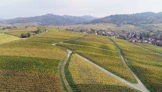 Blick von hoch oben über hügeliges, von Wegen durchzogenes Weinbaugelände. Rechts im Hintergrund liegt eine Siedlung am Fuße eines bewaldeten Berges. Links hinten sind weitere bewaldete Berge erkennbar.