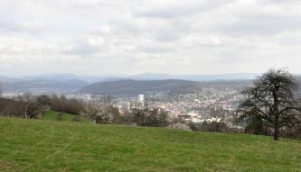 Blick über eine Wiese und eine kleine Baumgruppe in ein Tal mit Siedlungen. Dahinter befindet sich ein kleiner Berg. Im Hintergrund ist eine Bergkette zu sehen.
