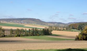 Blick über hellbraune und grüne Felder mit kleinen Baumgruppen auf einen sich in der linken Bildhälfte erhebenden bewaldeten Hügel.