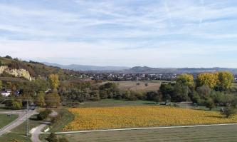 Das Bild zeigt eine abwechslungsreiche Landschaft mit felsigem Hügel links, Äckern, Wiesen und Bäumen im Vordergrund sowie einer Siedlung und bewaldeten Bergen im Hintergrund.