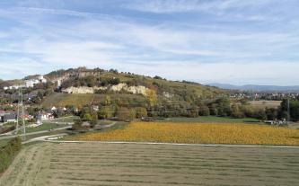Von erhöhtem Standort überblickt man kahle und bepflanzte Äcker sowie einen nach rechts abfallenden Berg. Auf diesem Berg sind links Rebflächen und darüber Felsen zu erkennen. Noch weiter links ist eine Siedlung den Berghang hinaufgewachsen.