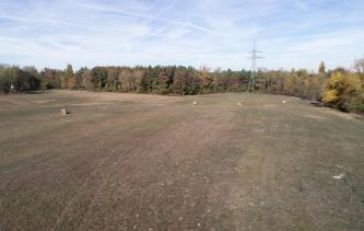 Blick auf eine wellige, grünlich braune Ebene mit einzelnen Heuballen. Im Hintergrund begrenzt Wald das Gelände.