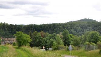 Hinter einem das Bild durchziehenden Waldstreifen steigt rechts ein Berg auf. Auf der Kuppe ist ein Burgturm zu erkennen. Links, unterhalb des Waldes an einer Straße, ist ein Gesteinsaufschluss sichtbar.