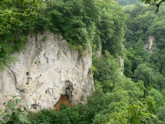 Das Bild zeigt links eine weißlich graue Felswand mit dichtem Baumbewuchs ober- und unterhalb. Rechts ist der Wald noch dichter, so dass hier nur kleinere Felsstücke zu sehen sind.