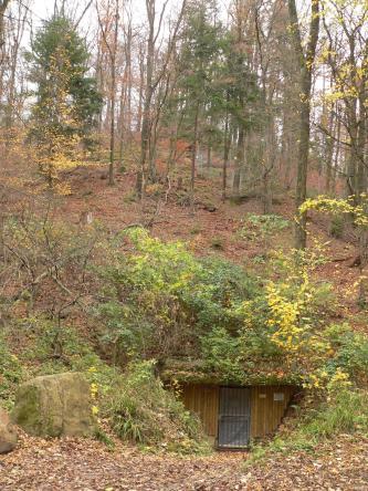 Unterhalb eines bewaldeten und mit Laub bedeckten Hanges liegt der Eingang zu einem ehemaligen Bergwerk. Der Eingang ist mit Brettern und einer Gittertür gesichert, das Betreten ist verboten.