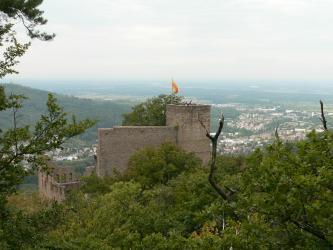 Von erhöhtem Standort blickt man auf eine hinter Bäumen aufragende Burgruine. Die rötlich graue Burg besteht aus einem Aussichtsturm rechts sowie eine links angrenzende hohe Mauer sowie Giebel mit Fensterhöhlen. Im Hintergrund breitet sich eine Stadt aus.