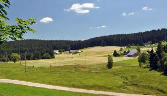 Unter einem fast wolkenlosen Himmel und einem Nadelwaldstreifen zeigt sich eine hügelige Wiesen- und Weidenlandschaft. Verstreut stehen Häuser mit Walmdächern zwischen den Feldern. Im Vordergrund breitet sich eine bräunlich grüne Feuchtwiese aus.