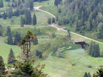 Blick von hoch oben über Baumspitzen auf eine grüne Landschaft mit Baumgruppen, Wald und Wegen. Rechts vorne liegt ein kleiner vermoorter See. Dahinter schließen sich links mehrere breite grüne Wälle an.