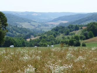 Über einem mit Blumen durchsetzten Getreidefeld breitet sich ein weites Tal aus. Rechts und links sind bewaldete, ansteigende Hänge zu erkennen; durchsetzt mit Acker- und Grünlandflächen.