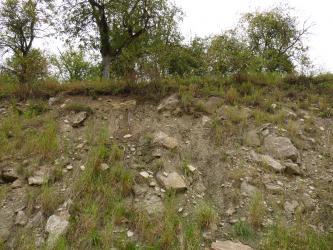 Das Bild zeigt einen steilen, teilweise mit Gras bewachsenen Hang, auf dem sich unterschiedlich große Steinbrocken verteilen. Die Farbe des Bodens wechselt von braun unterhalb der Kuppe zu graubraun weiter unten.