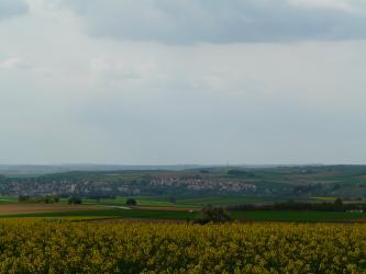 Unter einem dunstigen Himmel breitet sich eine wellige, von Grünland- und Ackerflächen durchzogene Ebene aus. Links und zur Bildmitte hin zeigt sich eine größere Ortschaft. Im Vordergrund sind die Böden flacher; hier überblickt man ein Rapsfeld.