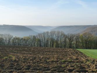 Der Blick geht über einen gepflügten, dunkelbraunen Acker mit rechts angrenzendem Grünland. Dahinter zieht sich eine noch wenig belaubte Reihe von schlanken Bäumen. In der Ferne ist ein V-förmiges Tal mit beiderseits ansteigenden, bewaldeten Höhen.
