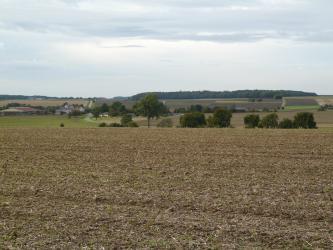 Hinter einem braunen, abgeernteten Acker und einer Reihe von einzeln stehenden Bäumen zeigt sich eine wellige, zum Horizont hin ansteigende Ebene. Eine Straße sowie ein Gehöft links trennt die Landschaft von weiteren Ackerflächen.