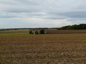 Von einem braunen Acker aus blickt man auf weitere, horizontal verlaufende wellige Ackerflächen, die sich mit Grünland abwechseln. Eine auf- und abtauchende Straße sowie Waldflächen im Hintergrund vervollständigen das Bild.