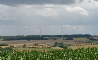 Unter einem dunstigen, wolkigen Himmel breitet sich eine leicht wellige Ackerlandschaft aus. Einzelne Grünflächen, Waldstreifen im Hintergrund sowie Windräder ergänzen das Bild.