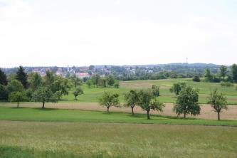 Das Bild zeigt eine leicht wellige Acker- und Grünlandschaft mit einzelnen Streuobstbäumen im Vordergrund. Im Hintergrund sind Siedlungsgebäude sowie bewaldete Höhen erkennbar.
