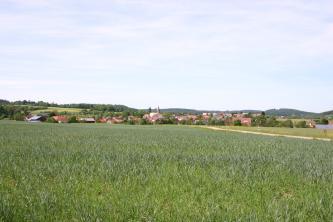 Hinter einem dicht begrünten Acker, der bis zum Hintergrund reicht, sind eine langgezogene Ortschaft sowie flache, teilweise bewaldete Hänge erkennbar.