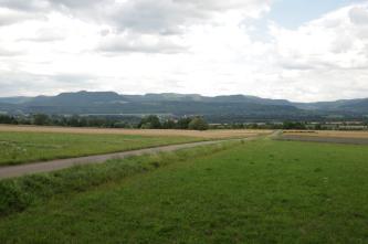 Im Vordergrund befinden sich begrünte Ackerflächen mit einem Weg, der sich von links vorne nach rechts hinten zieht. Im Hintergrund sind hinter einer Baumgruppe gestufte Hänge vor bewölktem Himmel erkennbar.