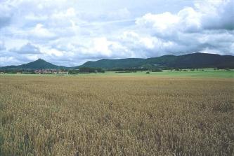Das Bild zeigt im Vordergrund ein Getreidefeld. Im Hintergrund befinden sich vor bewölktem Himmel bewaldete Bergrücken. Vor den Bergen ist eine Ansiedlung zu erkennen.